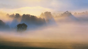 Herbst-Nebel   stockfotografie