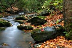 Herbst-Nebenfluss stockbilder