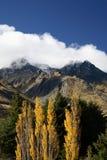 Herbst in Neuseeland Lizenzfreie Stockfotos
