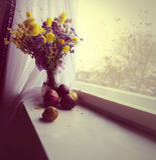 Herbst-noch Leben Lizenzfreie Stockbilder