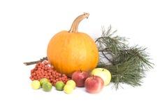 Herbst Nochlebensdauer Stockfotografie