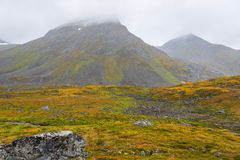Herbst in Norwegen Lizenzfreie Stockbilder
