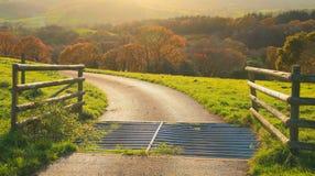 Herbst in Ost-Devon Stockbilder