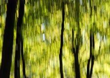 Herbst am Park Lizenzfreie Stockfotos
