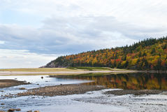 Herbst-Pastell Lizenzfreies Stockfoto