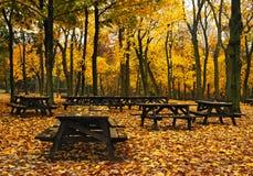 Herbst-Picknick-Tabellen Stockfotografie