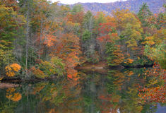 Herbst-Reflexion Lizenzfreie Stockfotos