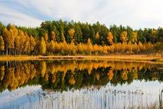 Herbst-Reflexion Lizenzfreies Stockfoto