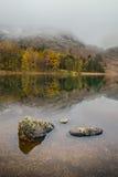 Herbst-Reflexionen Stockbilder