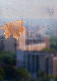 Herbst, regnerische Stadt durch ein Fenster mit Regentropfen Lizenzfreie Stockbilder