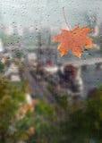 Herbst, regnerische Stadt durch ein Fenster mit Regentropfen Stockbild