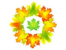 Herbst rund Lizenzfreie Stockfotos