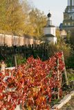 Herbst in Russland Lizenzfreie Stockfotos