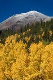 Herbst-Schneefälle stockbild