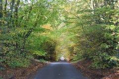 Herbst in Schottland lizenzfreie stockbilder
