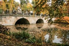 Herbst, See, Bäume Lizenzfreie Stockbilder