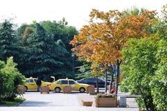 Herbst senery Stockbild