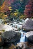 Herbst in Shosenkyo-Schlucht Stockbild
