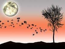 Herbst silhouettieren das Mondlicht und -baum auf Hintergrund Stockbilder