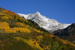 Herbst Splender lizenzfreie stockbilder
