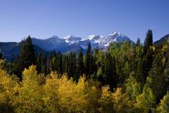 Herbst SPlender stockfotografie