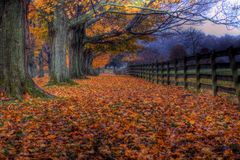 Herbst am Springton Landsitz-Bauernhof Stockbild