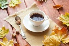 Herbst Stillife Lizenzfreies Stockbild