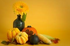 Kürbisse und Sonnenblume Lizenzfreie Stockfotos