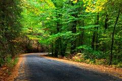 Herbst-Straße Lizenzfreies Stockbild