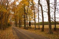 Herbst-Straße Lizenzfreie Stockfotografie