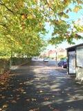 Herbst-Straße Lizenzfreies Stockfoto