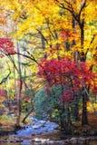 Herbst-Strom mit moosigen Felsen Stockfotos