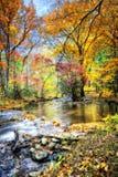 Herbst-Strom mit moosigen Felsen Stockfoto