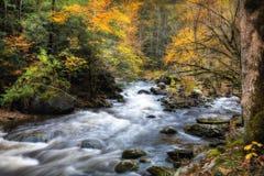 Herbst-Strom mit moosigen Felsen Lizenzfreie Stockfotos