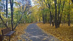 Herbst in Suvorov-Park der Stadt von Moskau lizenzfreie stockfotos