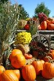 Herbst-Szene stockbild