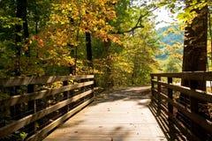 Herbst-Szene von einer Fuss-Brücke Stockbilder