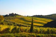 Herbst in Toskana Stockfoto
