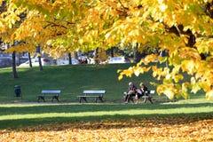 Herbst in Turin stockfotografie