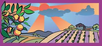 Herbst und Ernte im Land Lizenzfreie Stockfotos