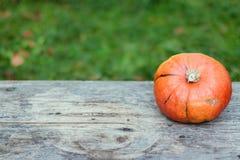 Herbst und Ernten: K?rbis liegt auf einem rustikalen, Holztisch Textraum lizenzfreies stockfoto