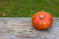 Herbst und Ernten: K?rbis liegt auf einem rustikalen, Holztisch Textraum lizenzfreie stockfotos