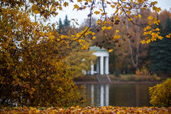 Herbst und Park Stockbild