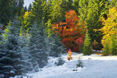 Herbst und Winter in den Bergen stockfotografie