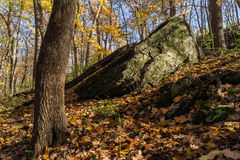 Herbst in verhungertem Felsen, Illinois Stockfoto
