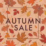 Herbst VERKAUF Förderndes Plakat mit Herbstlaub Fall der Blätter Lizenzfreies Stockfoto