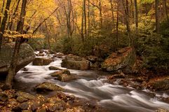 Herbst-Waldkaskade Stockfotografie