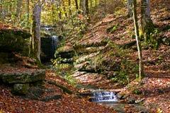 Herbst-Waldwasserfall Stockfotografie