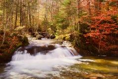 Herbst-Wasserfall Stockfotografie