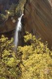 Herbst-Wasserfall Stockfoto
